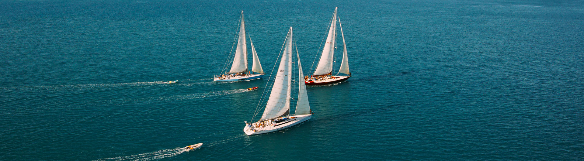 Prosail Whitsundays Ultimate Sailing Tours (Real Racing Yachts)