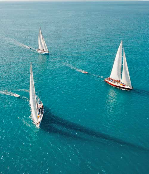 Prosail Whitsundays Fleet of Boats